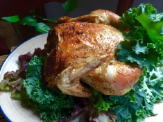 Homegrown and harvested cornish cross hen, roasted to perfection & served with garden fresh salad.